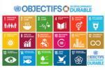 L'EDD pour 2030: Quelles sont les prochaines étapes pour l'Education au développement durable?